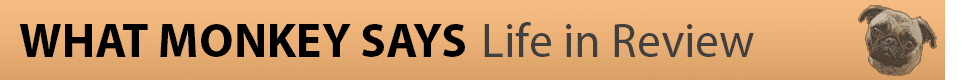 What Monkey Says